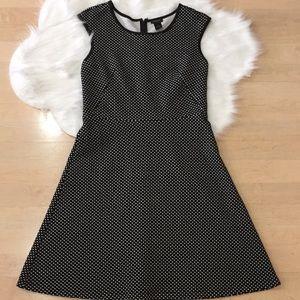 Ann Taylor polka dots dress size 6